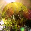 Hidden Productions