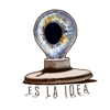 ES LA IDEA