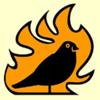 birds-on-fire films