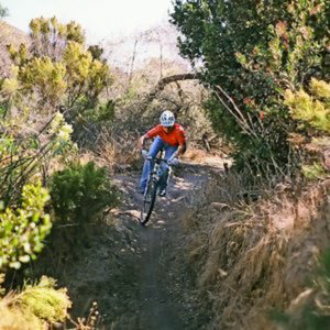 Profile picture for ChannelMTB