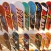 Woodward Skateparks