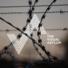 The Visual Asylum