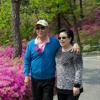 cheongpyeong