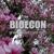 bioecon tv