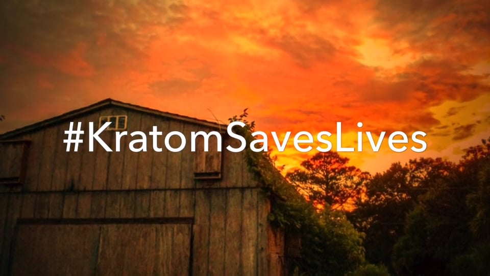 Kratom Culture Magazine on Vimeo