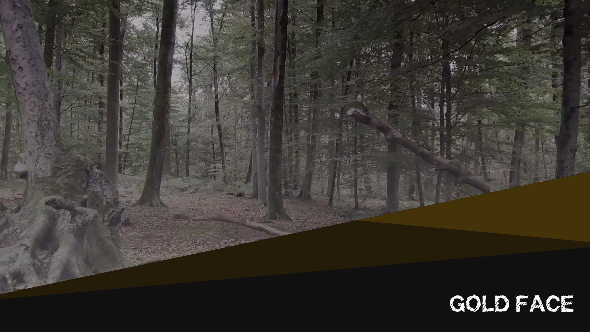 Vallée des lois - Gold Face (Clip, 2020)