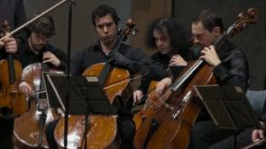 Jean Sibelius : concerto pour violon en RÉ mineur op. 47