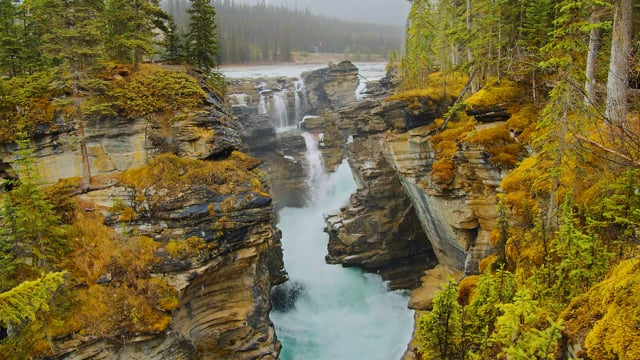 Snowy Day near Athabasca Falls,Canada - 4K HDR Nature Relax Video