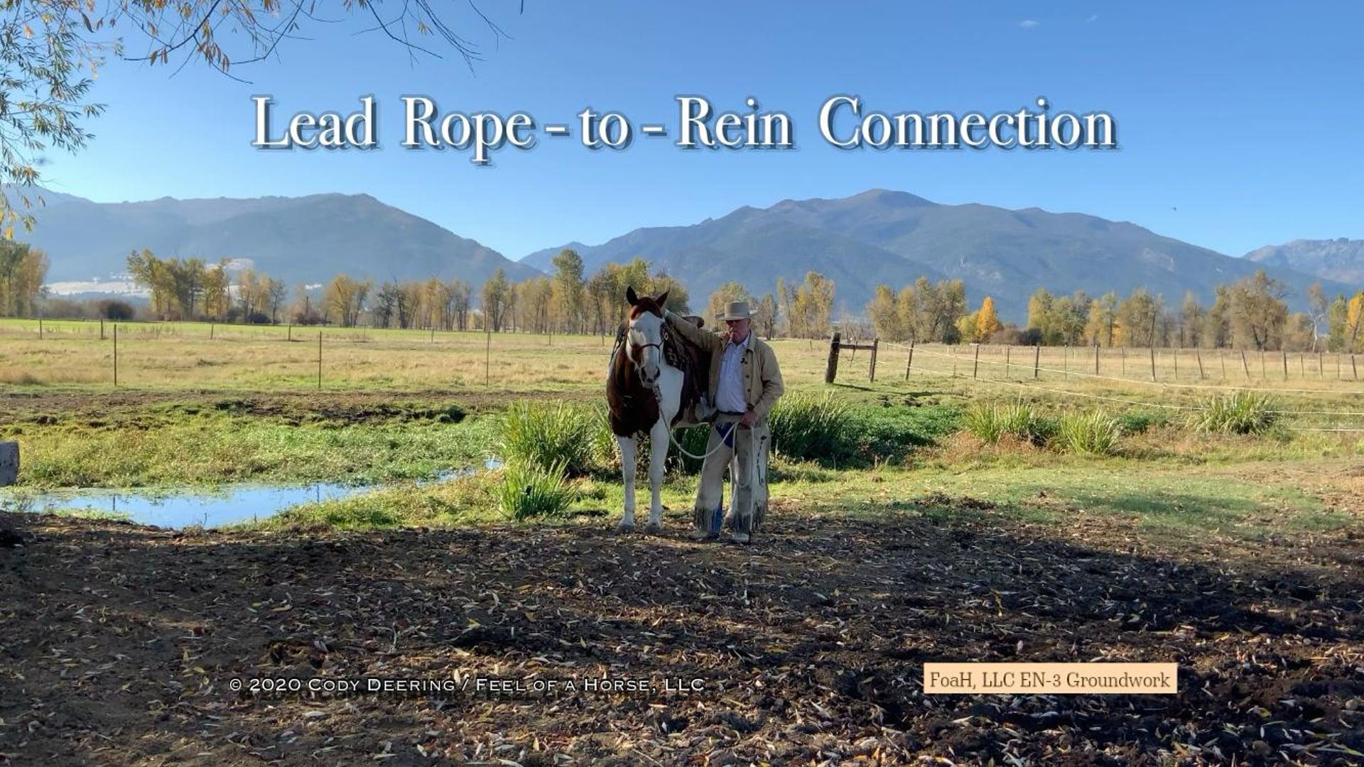 EN-3 The Lead Rope-to-Rein Connection / Cody Deering