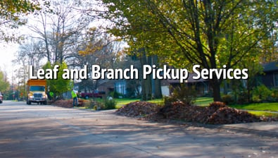 Thumbnail of video Leaf and Branch Pickup Services PSA