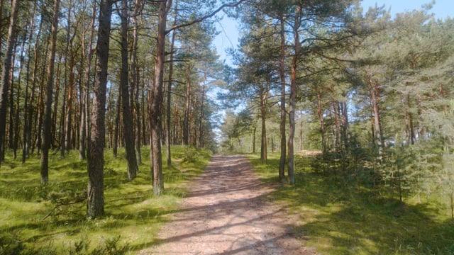 Amazing Nature of Lithuania - Walking tour - Part 1