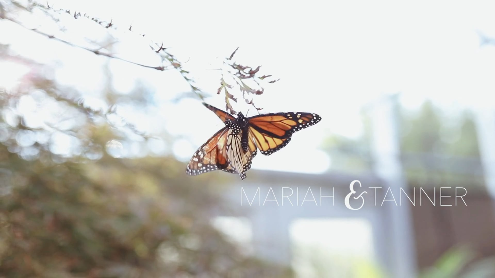 The Johnsons | Muskogee Oklahoma Wedding | Honor Heights Butterfly Papilion