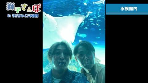 【LIONS ONLINE FESTA2020】獅子さんぽ後編!! ライオンズ・金子・源田がサンシャイン水族館へ!! 2020/12/5
