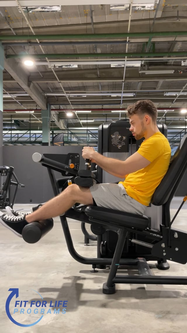Hamstring Curl, seated