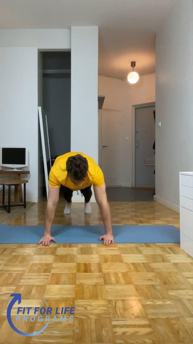 Push Up Plank Shoulder Tap