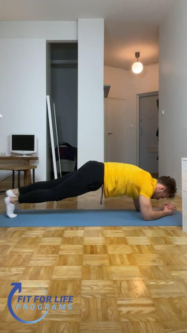 Plank Alternating Leg Raise