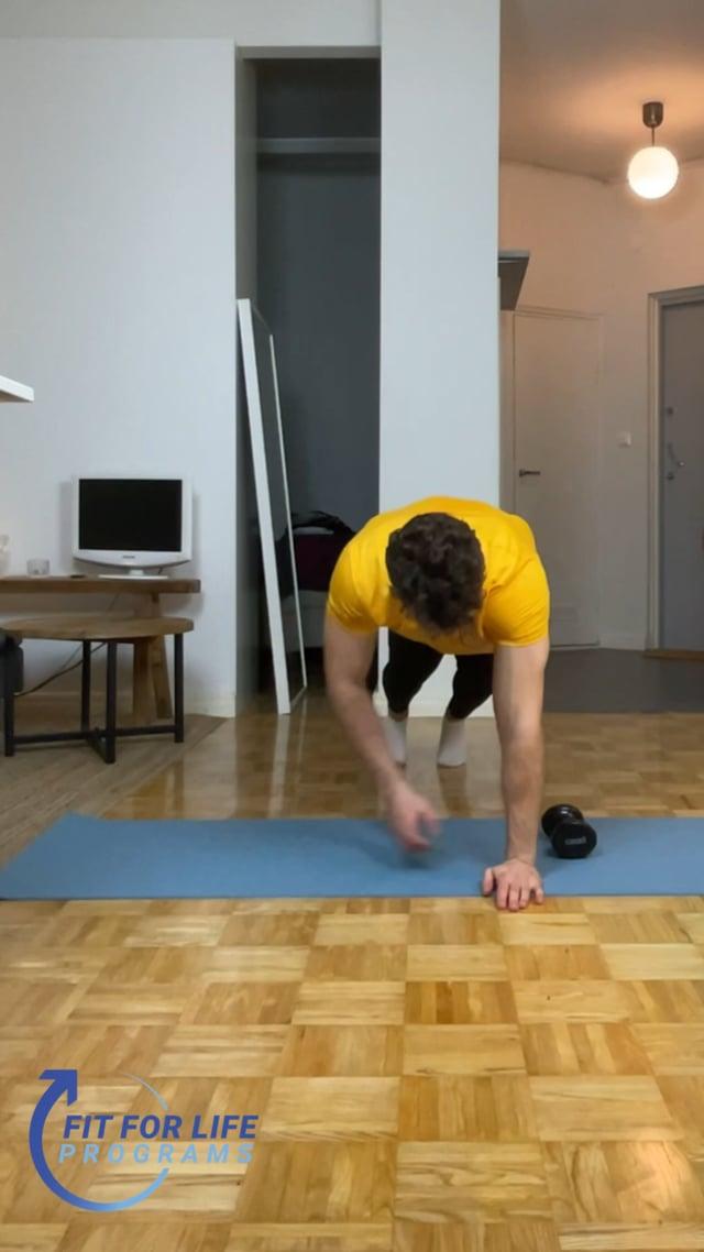 Push Up Plank Dumbbell Twist