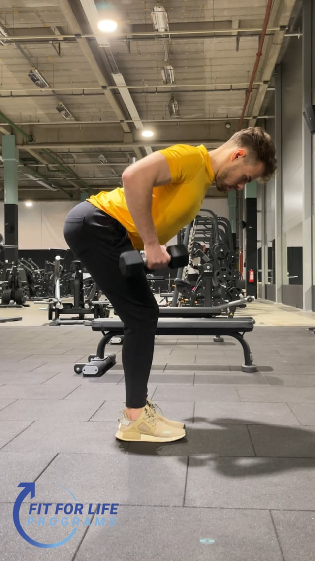 Dumbbell Bent Over Row