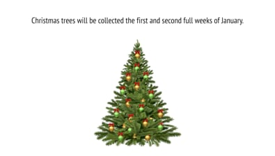 Thumbnail of video Christmas Tree Collection Information PSA