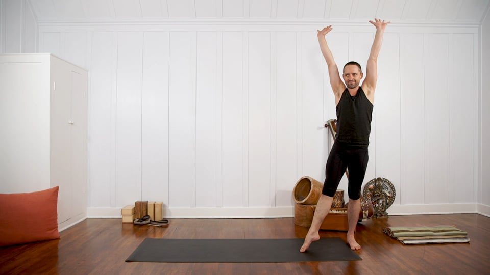 Peak Pose Sequencing: Handstand & Forearm Balance