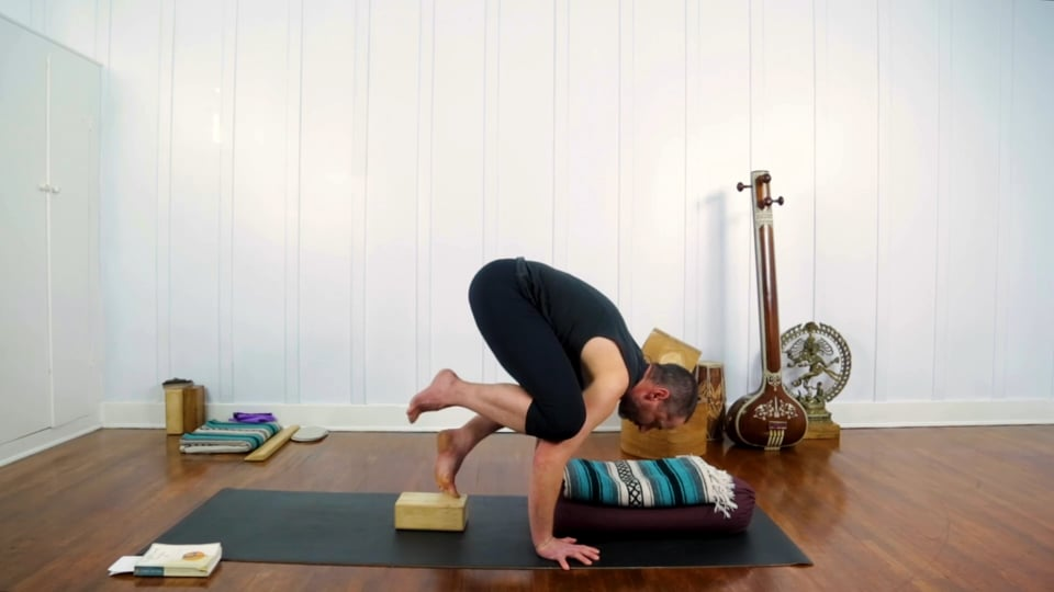 Peak Pose Sequencing: Project Arm Balance