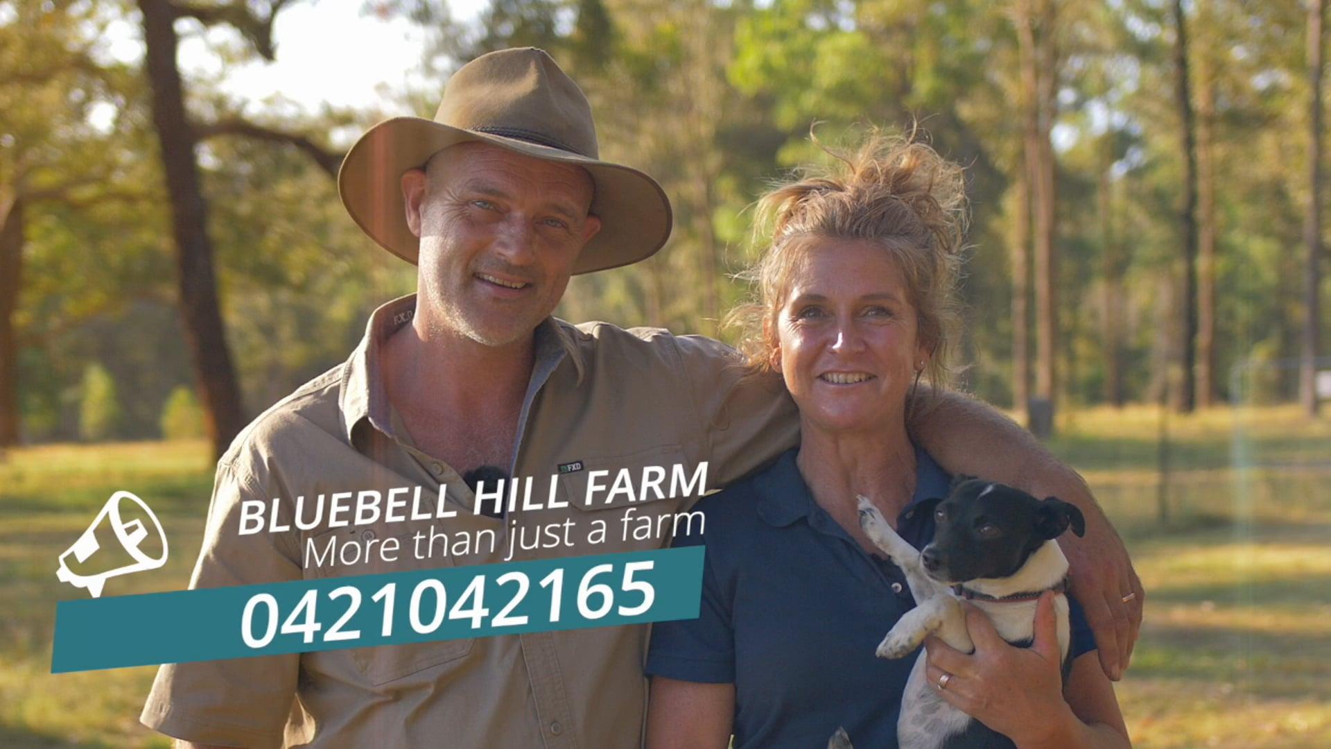 Bluebell Hill Farm - Burrell Creek
