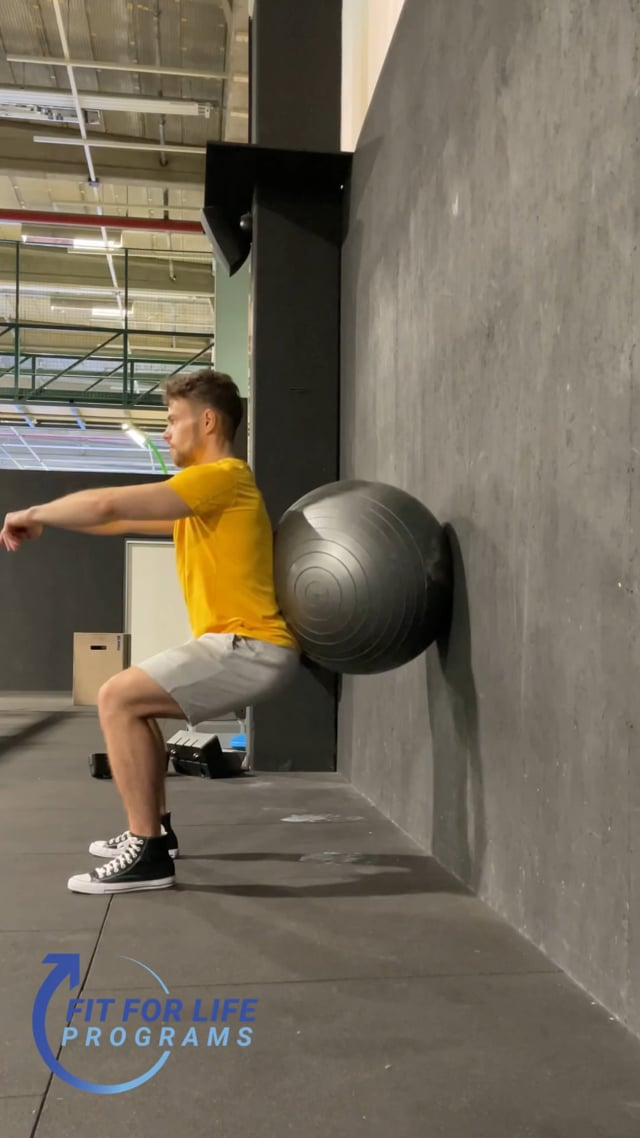 Ball Supported Squat