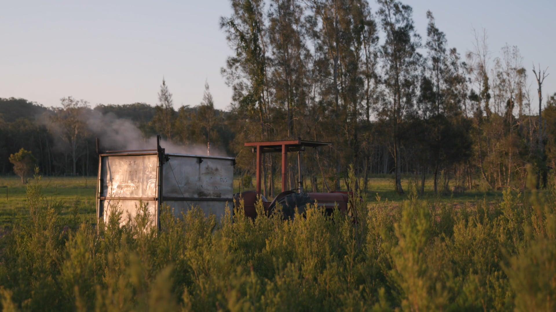 Olive Gap Organic Farm
