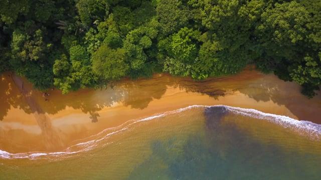 4k Bird's Eye View of Madagascar - Short Relax Video