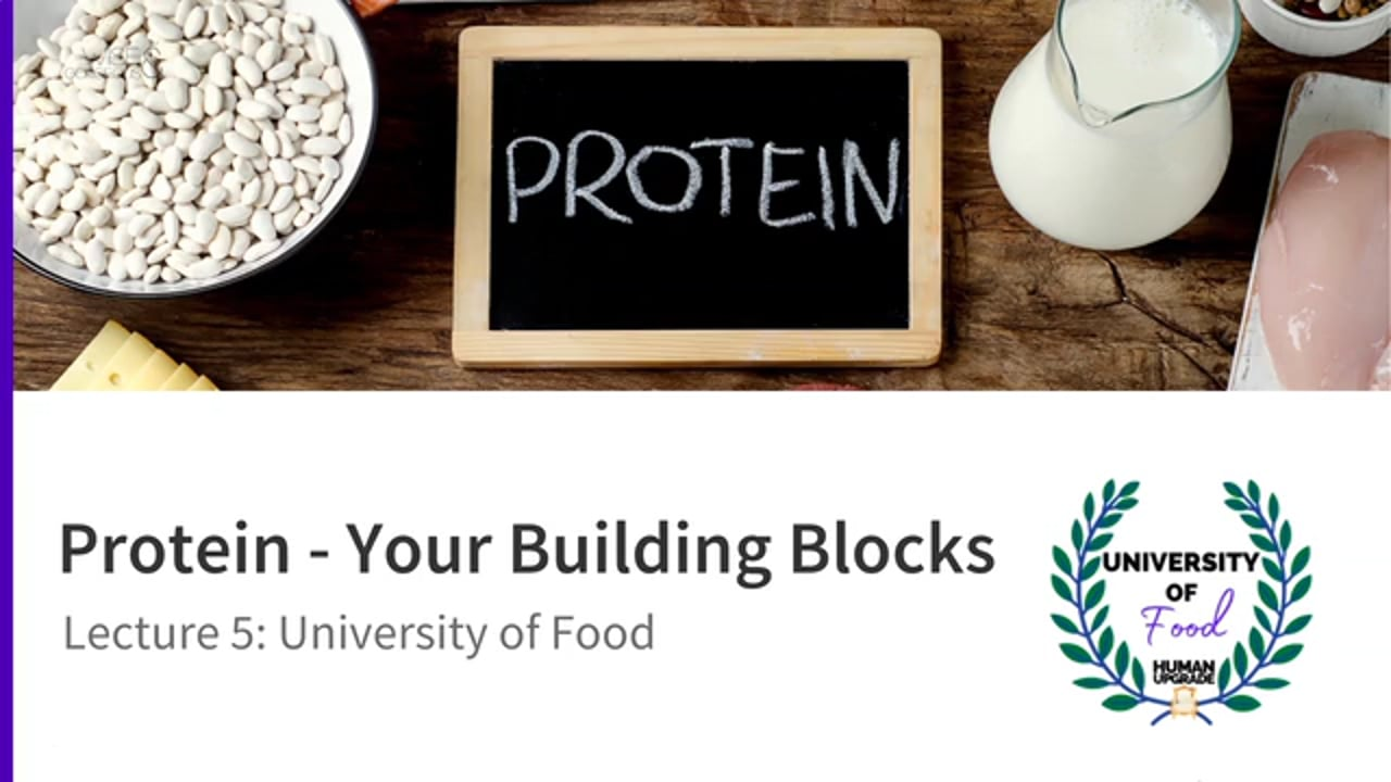 University of Food: Lecture 5 Protein