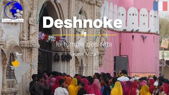 Deshnoke, fête au temple des rats • Rajasthan, Inde (FR)