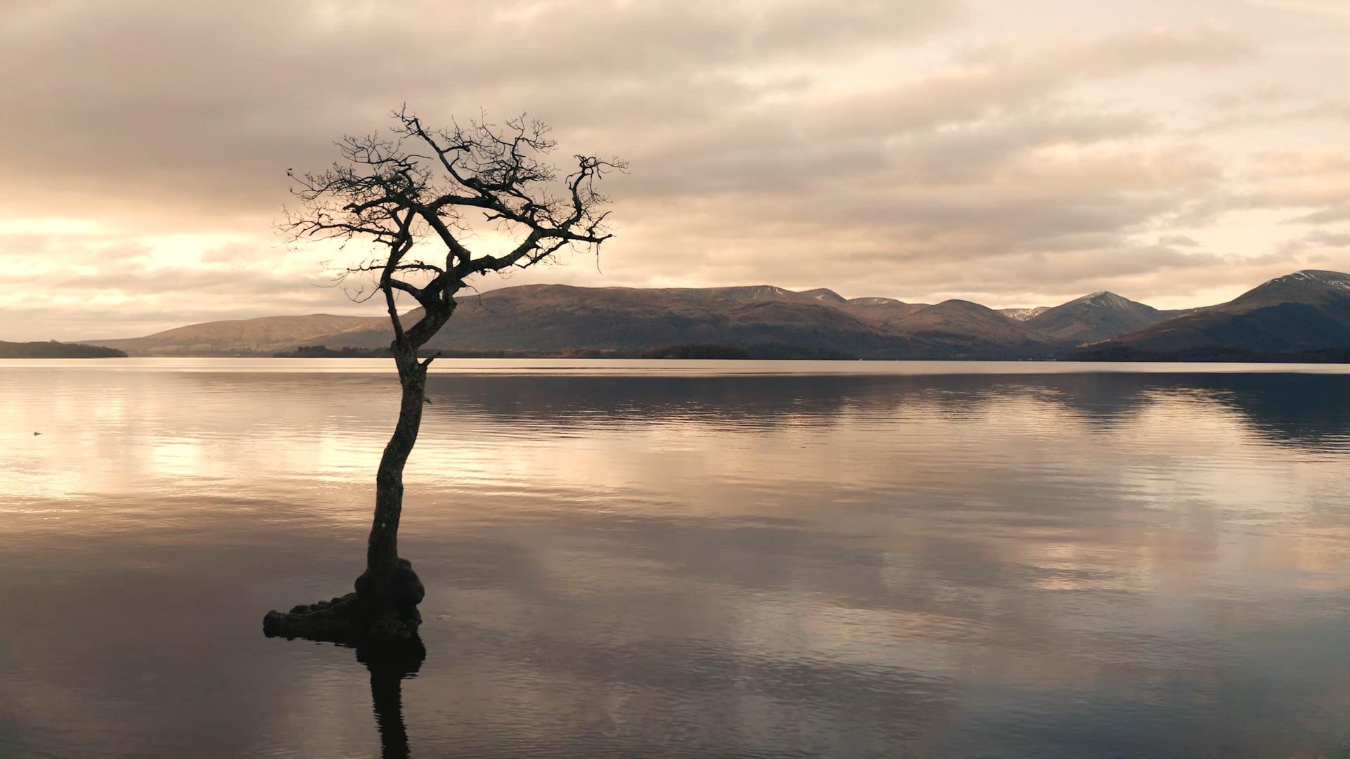 A Winter Walk - Loch Lomond