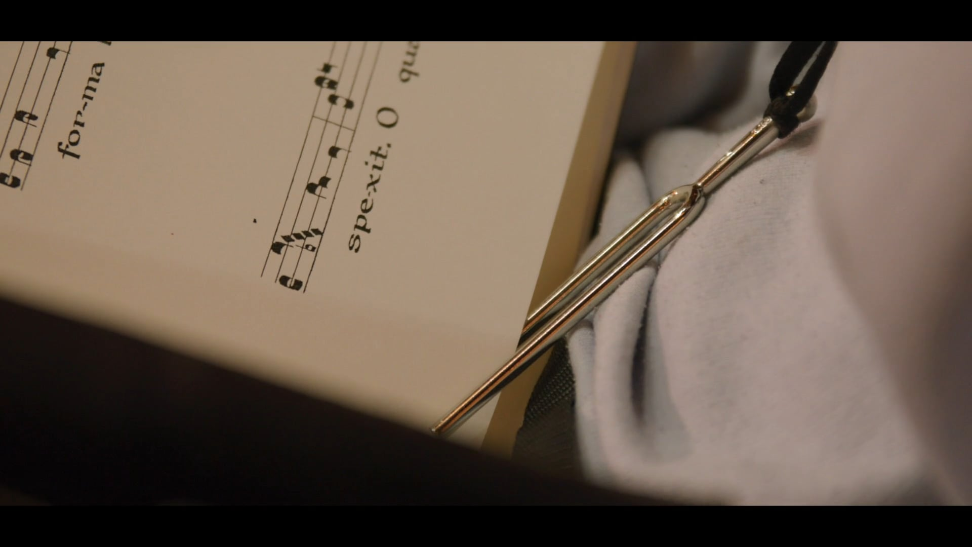 La Maitrise - Radio France - Short version