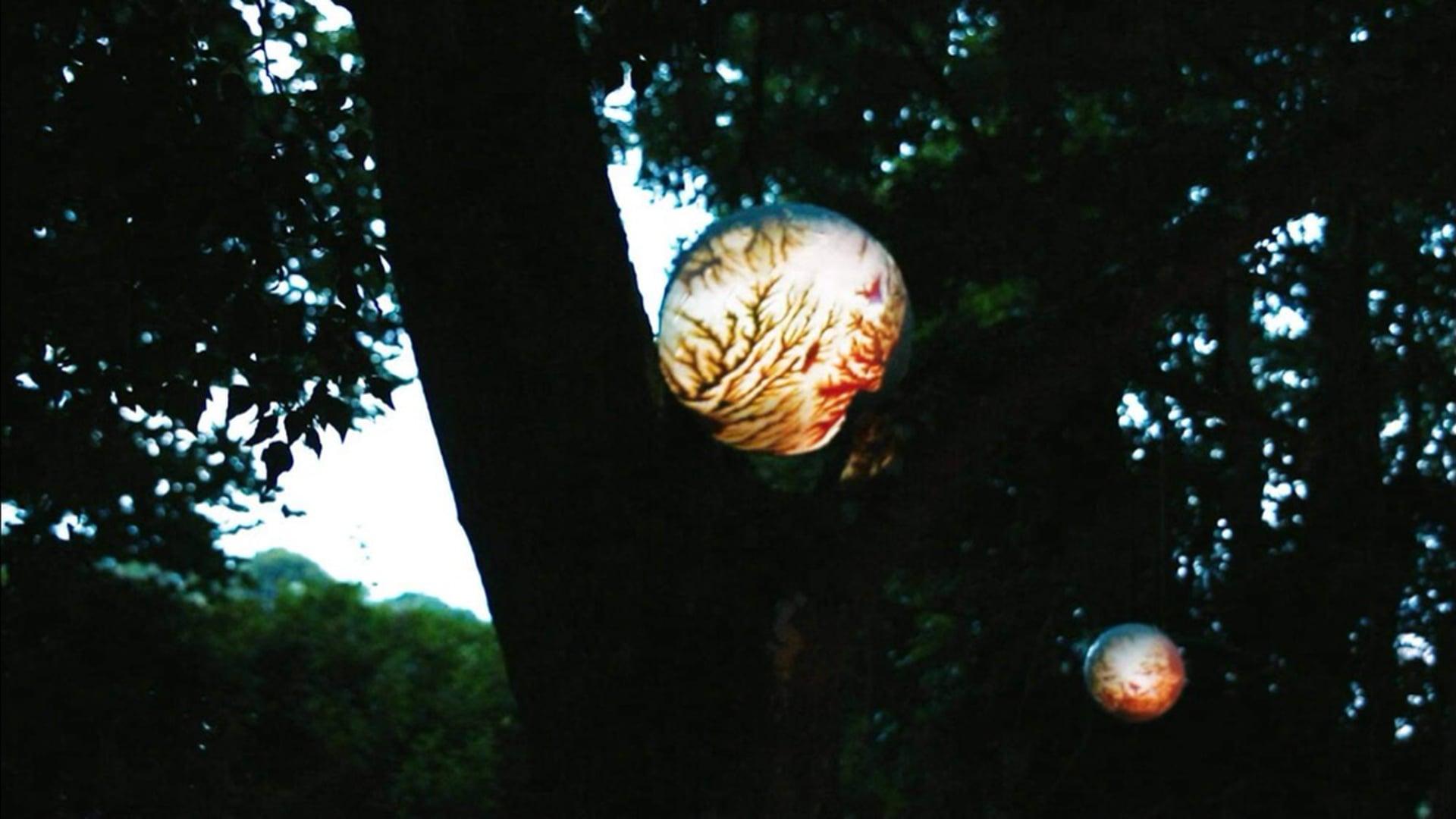 Adrena Adrena - Planet in The Woods
