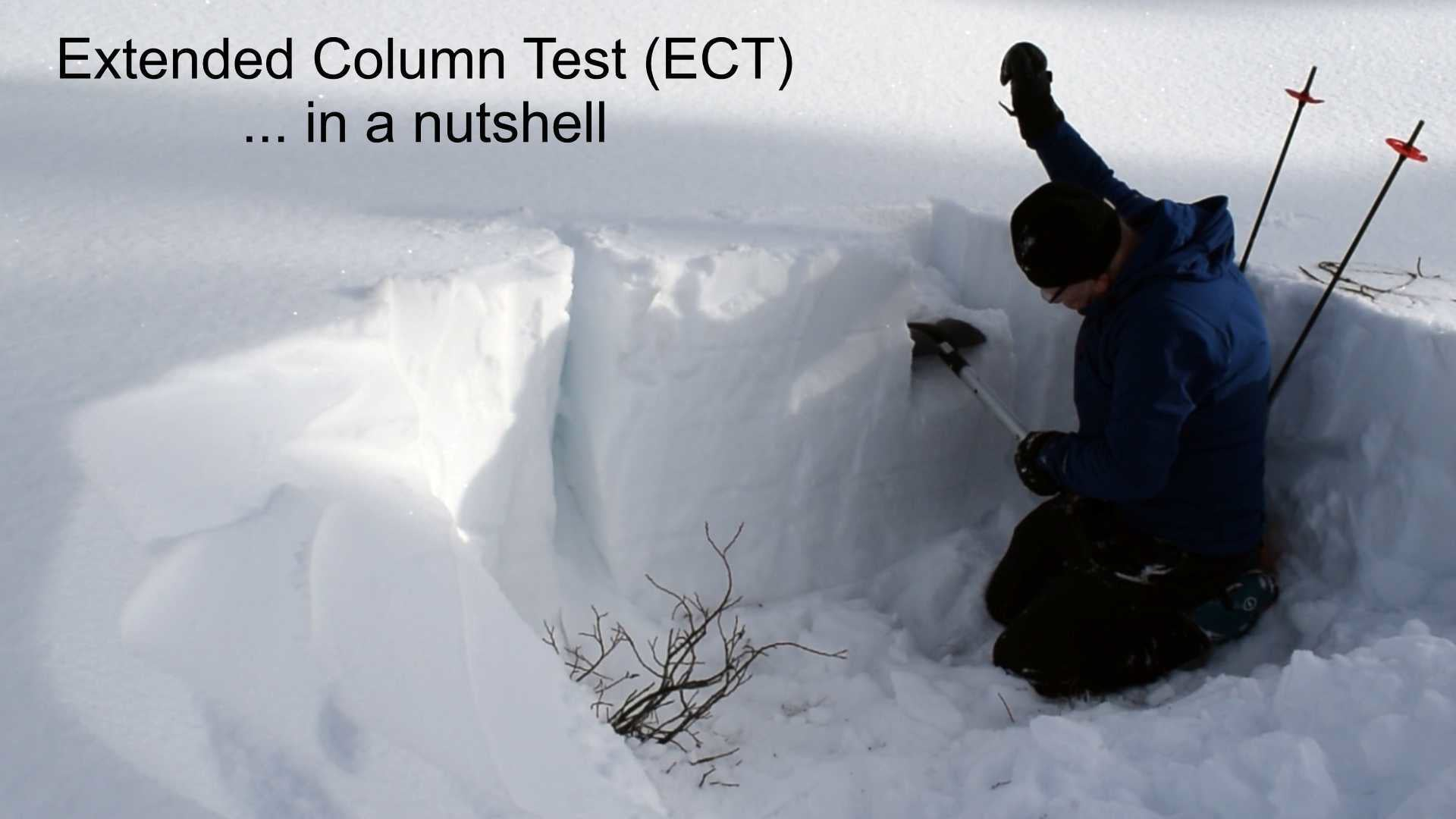 The Extended Column Test (ECT) in a nutshell