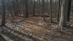 Nature Center Landscape Design Plan