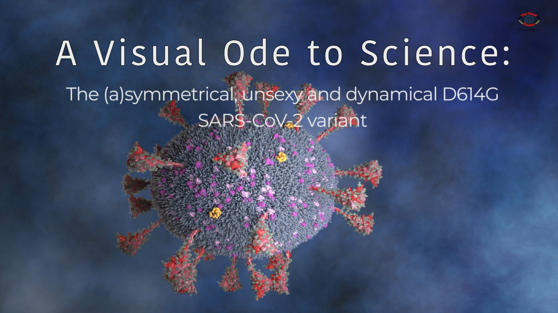 A Visual Ode to Science: The asymmetrical, unsexy and dynamical D614G  SARS-CoV-2 variant