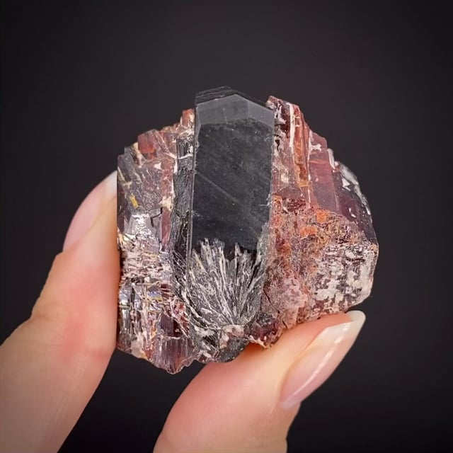 Tantalite-(Fe) with Tantalite-(Mn) - illustrated