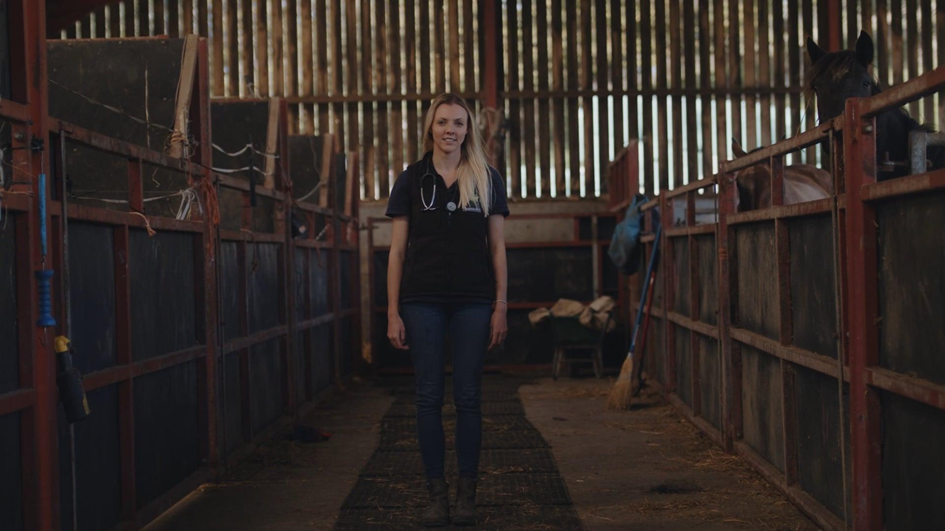Welsh Veterinary Film
