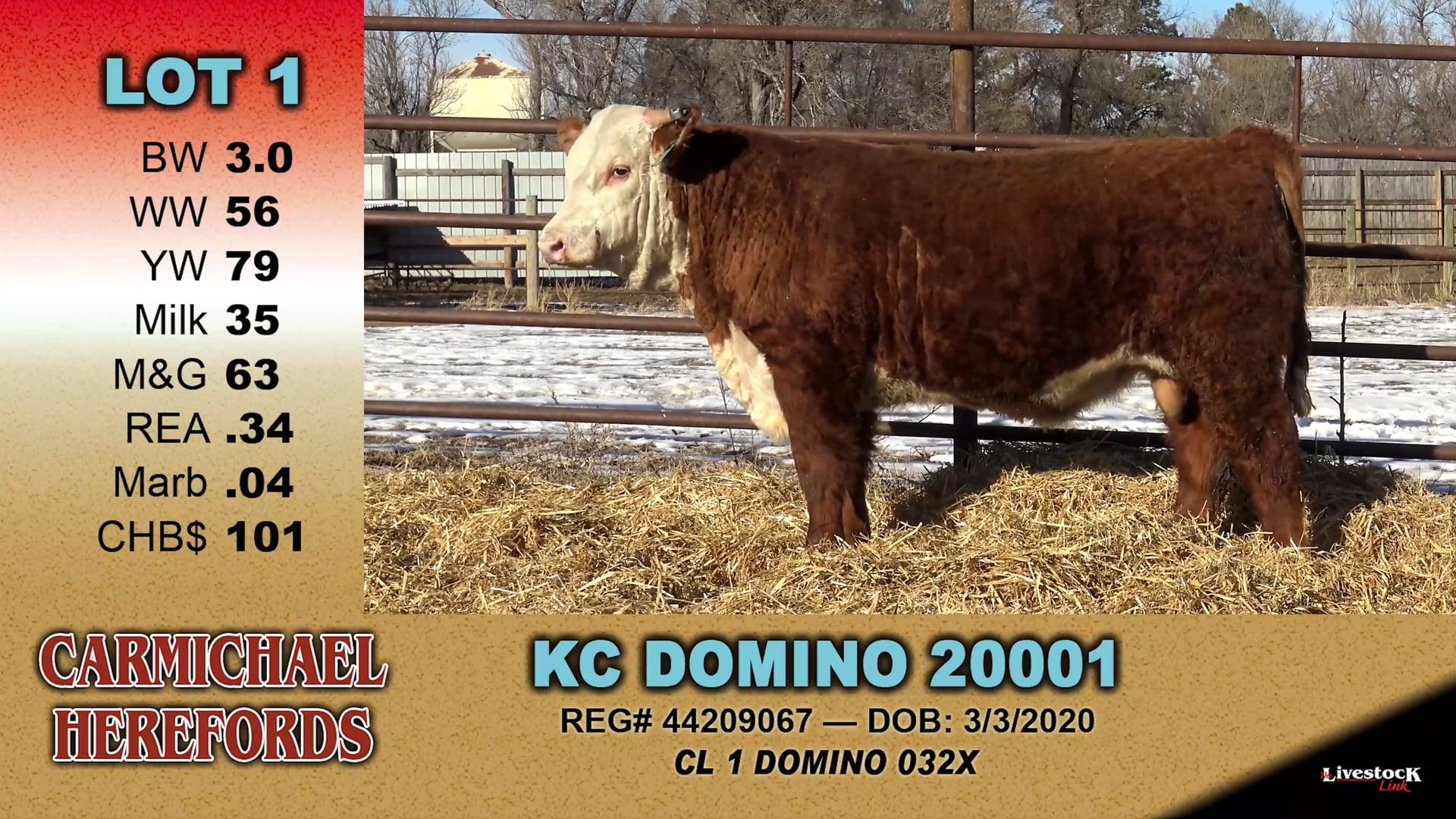 2021 Bull Sale
