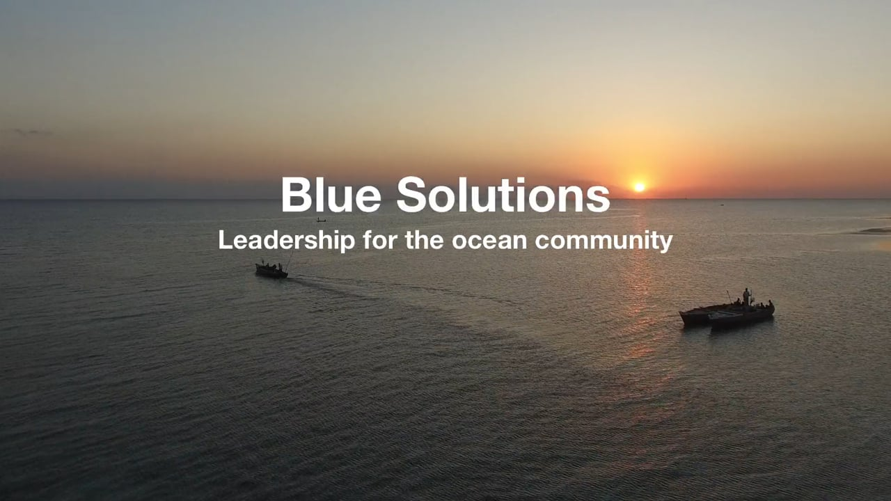 Join our Blue Leadership Journey