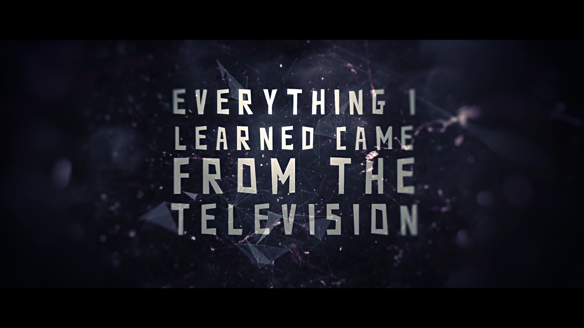 EVERYTHING I LEARNED CAME FROM THE TELEVISION - TRAILER