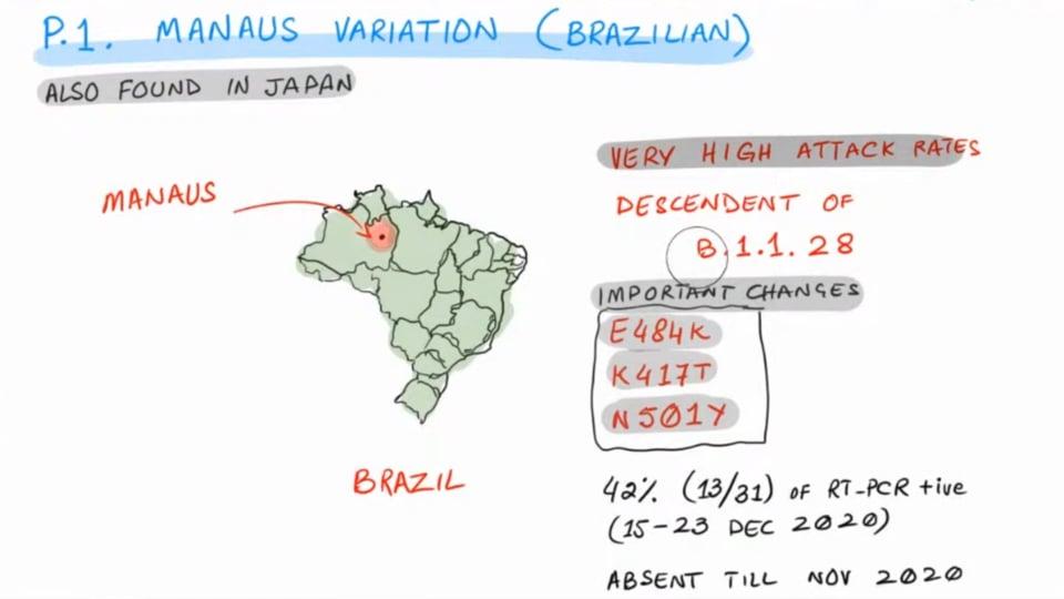 SARS-COV-2 - New Brazilian Strain P.1 Manaus