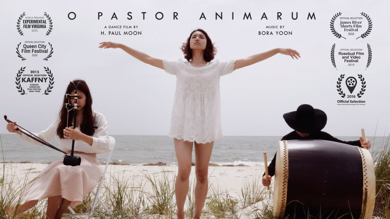 O pastor animarum