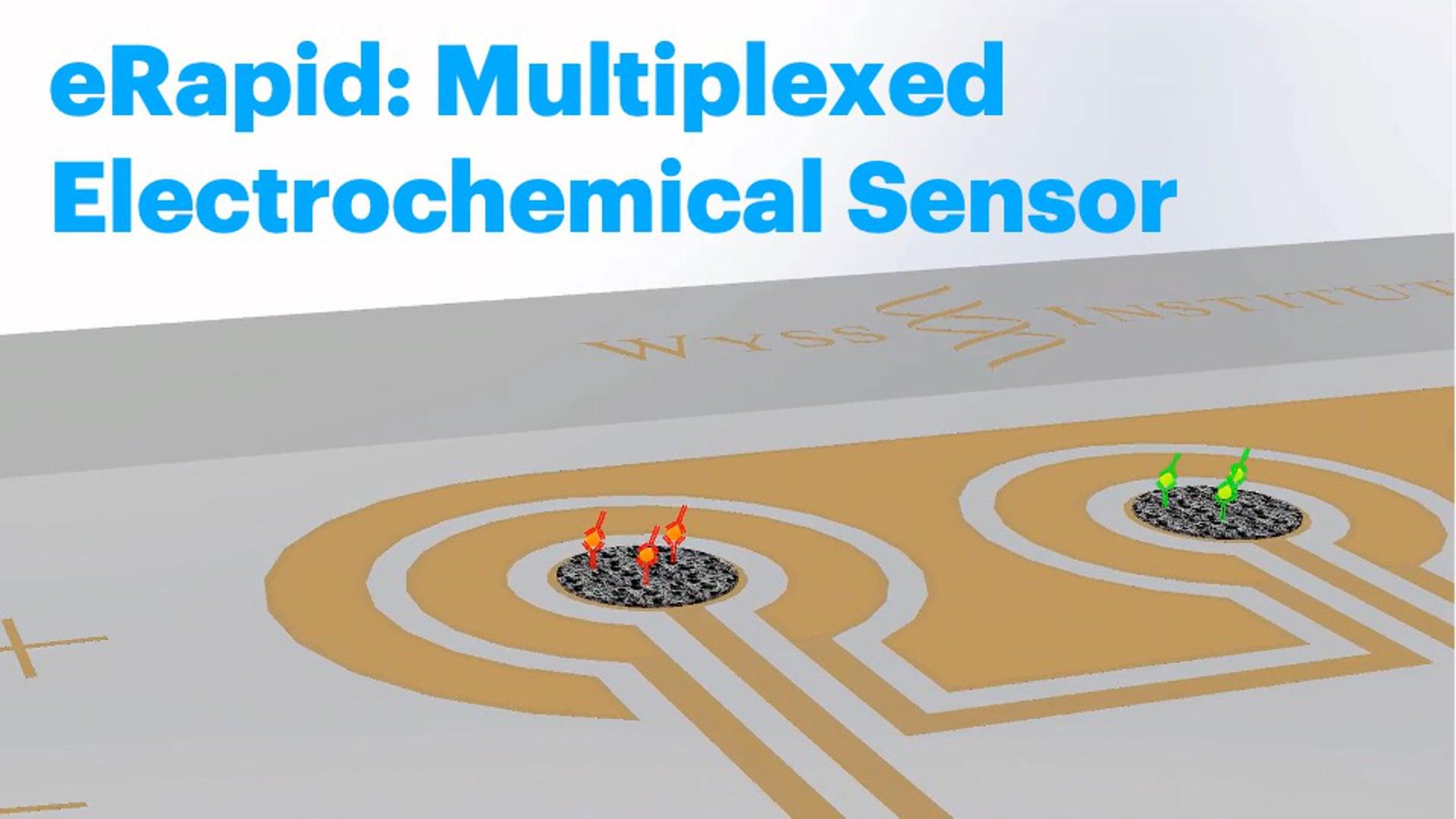 eRapid: Multiplexed Electrochemical Sensor