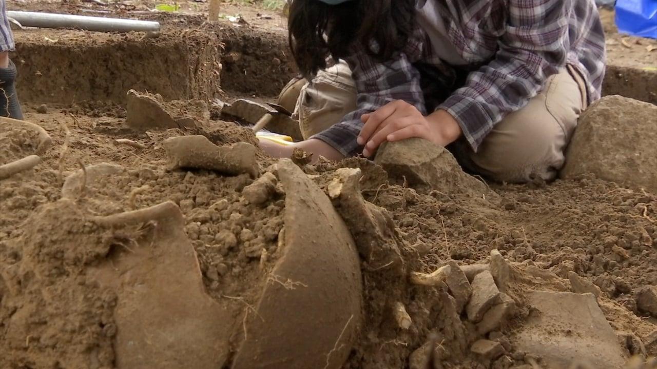 Teocelo: Hallazgo Arqueológico