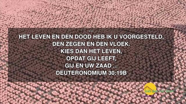 33.000 foetussen/baby's die per jaar in Nederland worden...