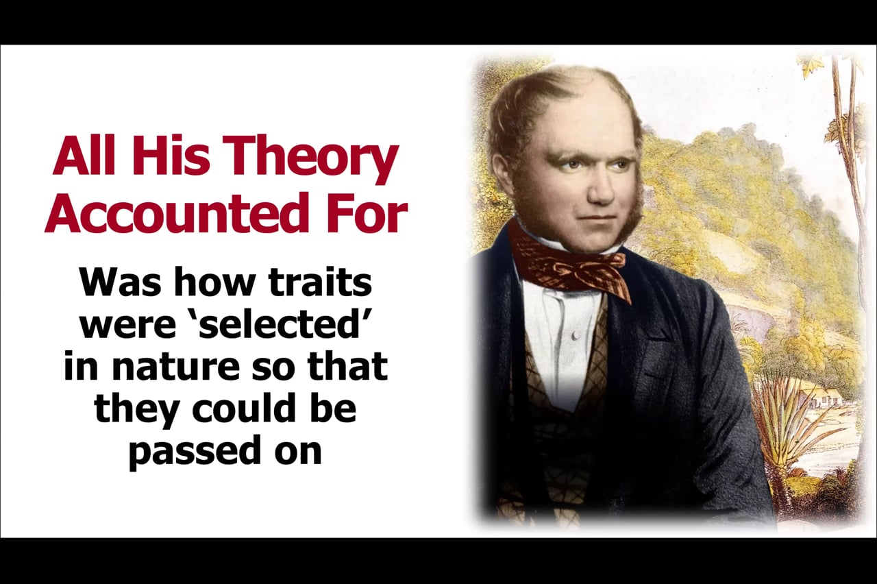 Gregor Mendel and the Birth of Genetics