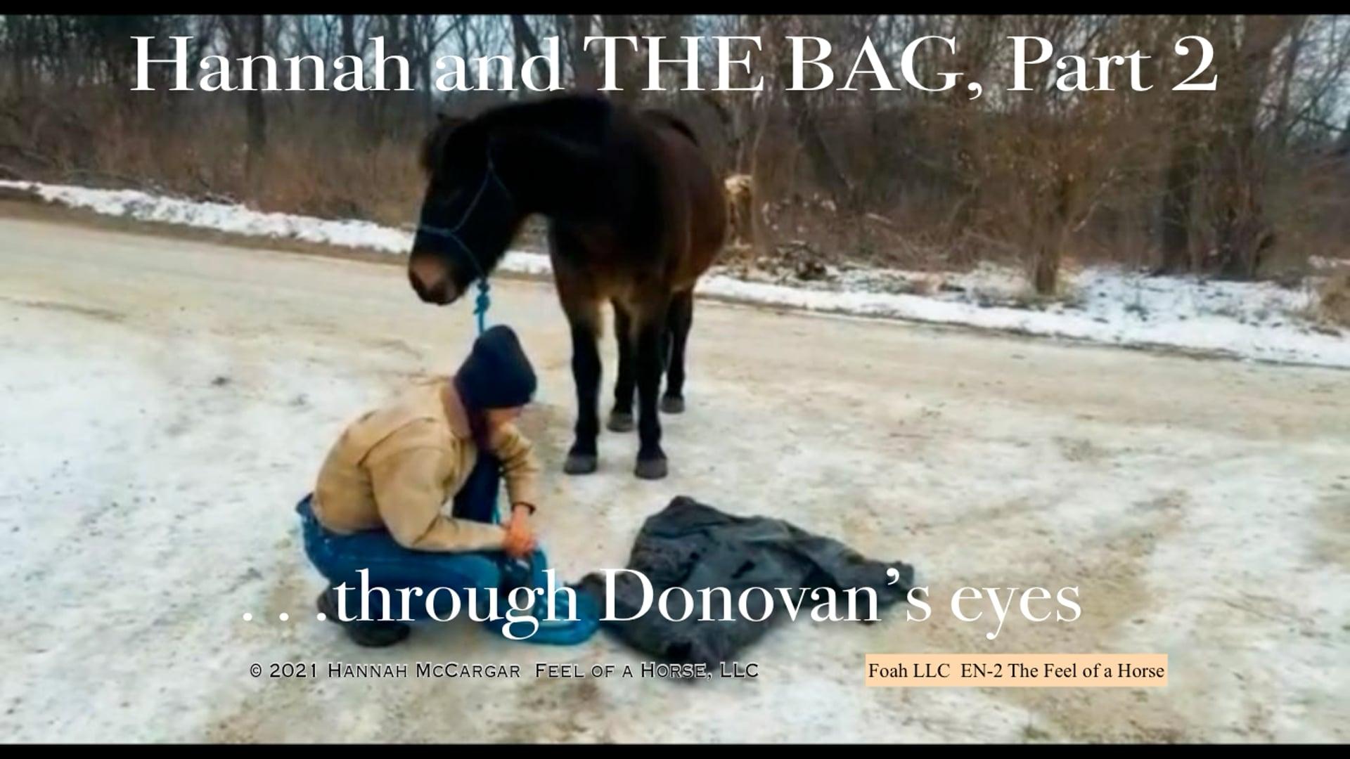 EN-2 Hannah & THE BAG, Part 2