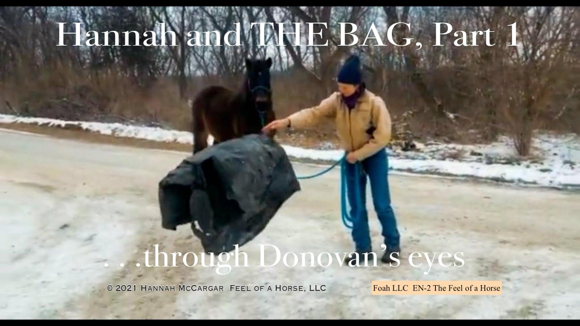 EN-2 Hannah & THE BAG,  Part 1